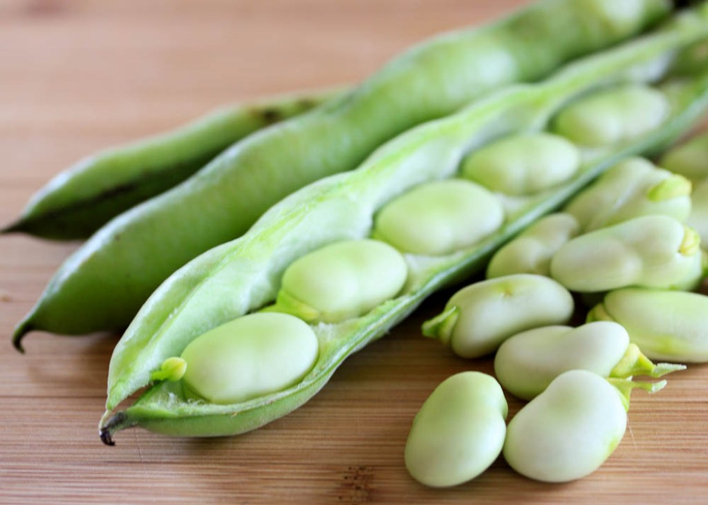 health-benefits-of-fava-beans